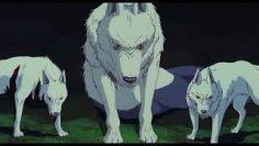Princess Mononoke- tribute