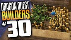 Dragon Quest Builders Gameplay – Ep 30 – Veggie Patch (Lets Play Dragon Quest Builders