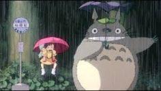My Neighbor Totoro  LIVE REACTION
