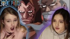 ?WHAT?! LUFFY'S BLOODLINE REAVELED – DRAGON & GARP? One Piece ep 313-315 REACTION