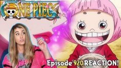 ?OTOKO!!! ?One Piece Episode 920 REACTION!