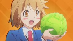 Top 10 Best-Looking Cabbages in Anime
